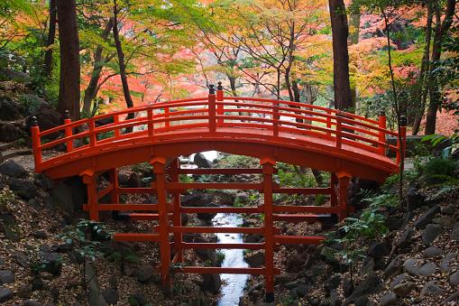 Footbridge「Tsutenkyo Bridge」:スマホ壁紙(14)