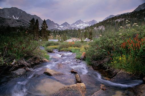 Inyo National Forest「Brook Flowing Beneath Bear Creek Spire」:スマホ壁紙(10)