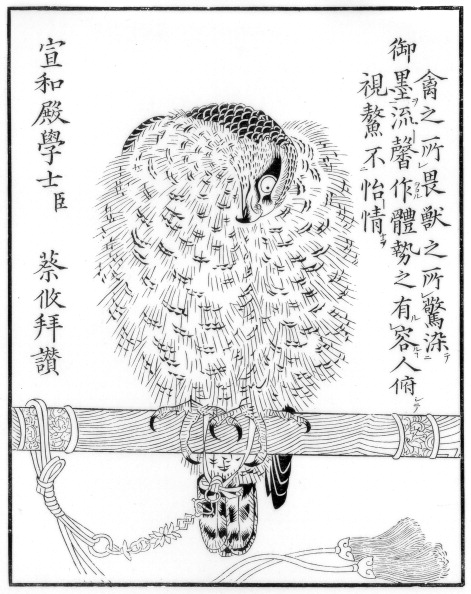 Perching「Falcon, 1886.」:写真・画像(9)[壁紙.com]