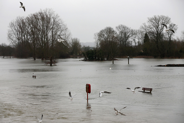Concepts & Topics「Pangbourne Suffers Flooding As Thames Water Levels Remain High」:写真・画像(10)[壁紙.com]