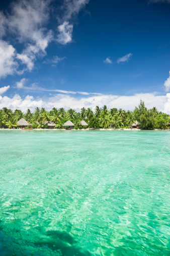 Aitutaki Lagoon「Aitutaki Island Beach Resort Cook Islands」:スマホ壁紙(14)