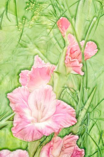flower「A Sketch of Pink Gladiolus Flower and Fennel Herb」:スマホ壁紙(15)