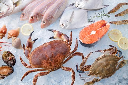 Crustacean「seafood」:スマホ壁紙(16)