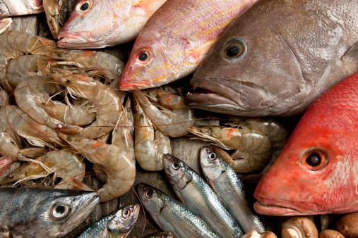 魚「シーフード」:スマホ壁紙(17)