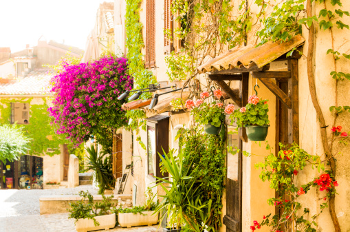 France「Street of provencal town full of flowers (Provence-Alpes-Cote d'Azur, France)」:スマホ壁紙(16)