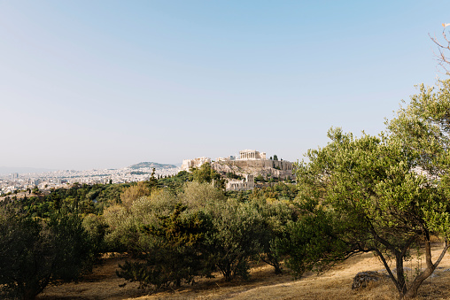 Grove「Greece, Athens, Acropolis and Parthenon surrounded by olive trees as seen from Areopagus」:スマホ壁紙(8)