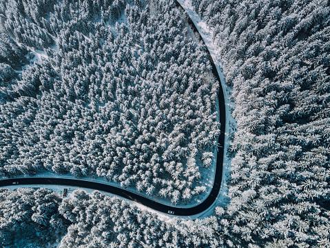 Winding Road「curvy road in winter forest」:スマホ壁紙(5)