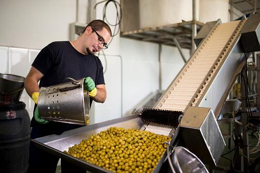 Real Life「Man working at olives factory」:スマホ壁紙(14)