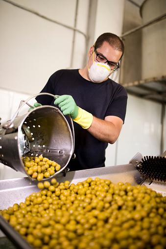 Real Life「Man working at olives factory」:スマホ壁紙(17)