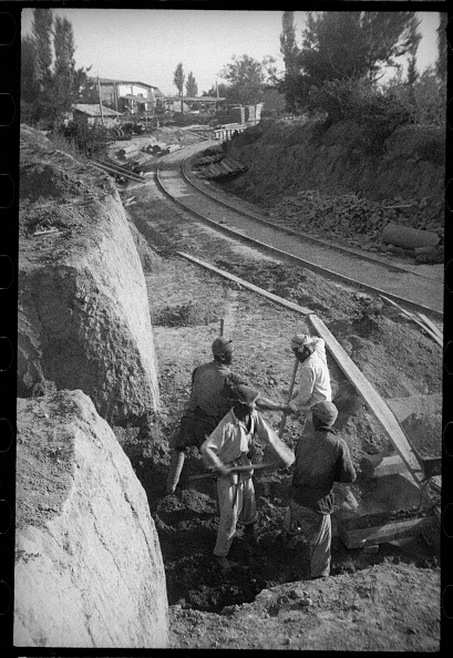 Log「Excavations」:写真・画像(17)[壁紙.com]