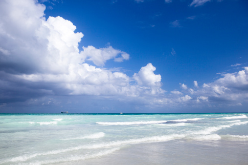 Miami Beach「のパラダイス」:スマホ壁紙(9)