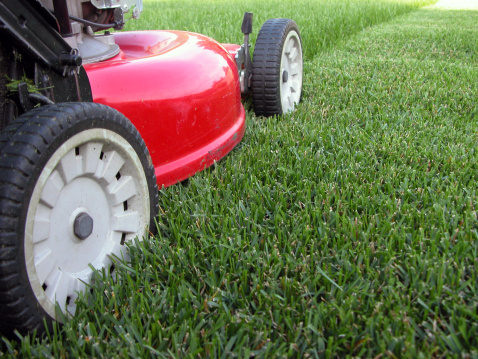 Lawn Mower「Mowing the Grass」:スマホ壁紙(11)