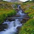 アラパホ国有林壁紙の画像(壁紙.com)