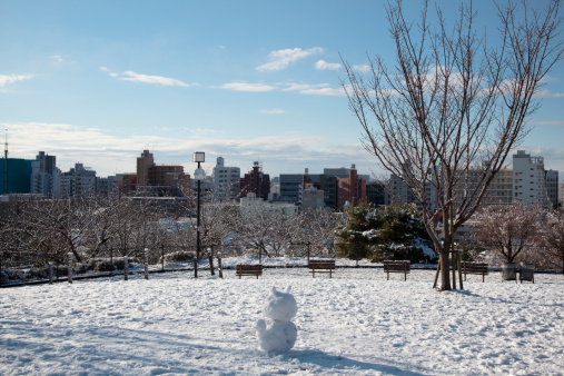 昼間「Snowman is on the hill covered with snow」:スマホ壁紙(12)