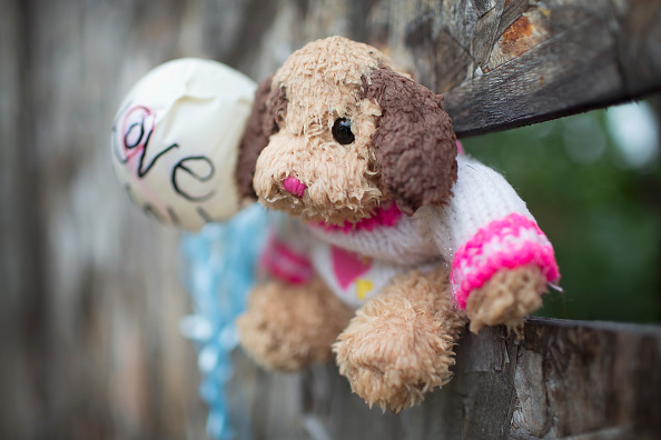 Stuffed「Nine Killed And 46 Wounded Over Labor Day Weekend In Chicago」:写真・画像(3)[壁紙.com]