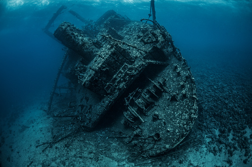 Shipwreck「Shipwreck rusted and covered with corals and sea life lying on the bottom of the Red Sea」:スマホ壁紙(11)