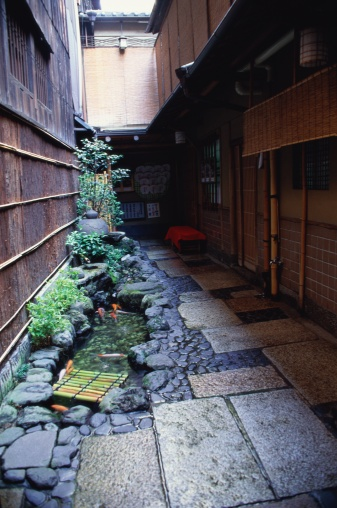Carp「Sidewalk, Kyoto Prefecture, Japan」:スマホ壁紙(9)