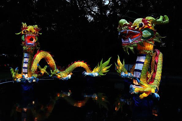 Auckland「2018 Auckland Lantern Festival」:写真・画像(5)[壁紙.com]