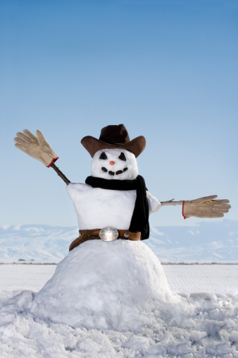 雪だるま「カウボーイスノーマン」:スマホ壁紙(10)