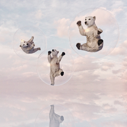 Bear Cub「Polar bear cubs in floating transparent glass spheres」:スマホ壁紙(13)