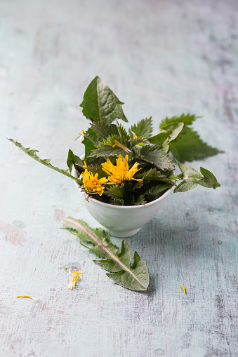 Uncultivated「Bowl of nettles and leaves and blossoms of dandelion」:スマホ壁紙(13)