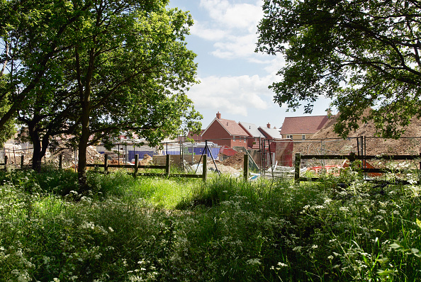 Development「Looking though woodland onto a housing estate under construction, Colchester, Essex, UK」:写真・画像(17)[壁紙.com]