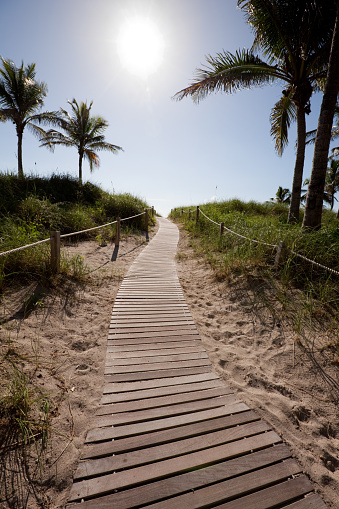 Miami Beach「通路には、マイアミビーチ」:スマホ壁紙(0)