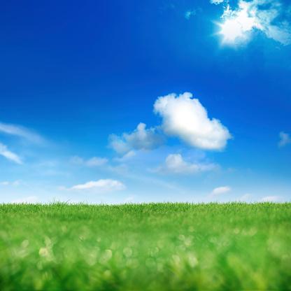 太陽の光「グリーン、ブルー」:スマホ壁紙(16)