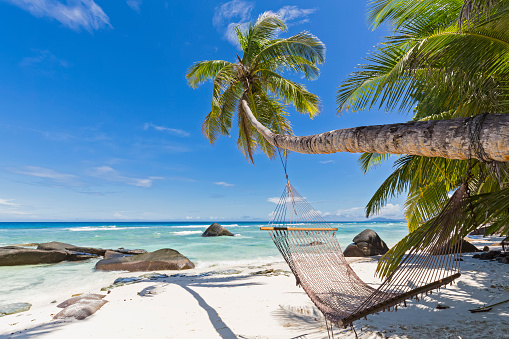 Beach「Seychelles, Silhouette Island, Beach La Passe, Presidentel Beach, palm with hammock」:スマホ壁紙(19)