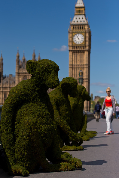 Environmental Conservation「The Body Shop Transforms Westminster Bridge To Raise Awareness Of Bio-Bridges」:写真・画像(18)[壁紙.com]