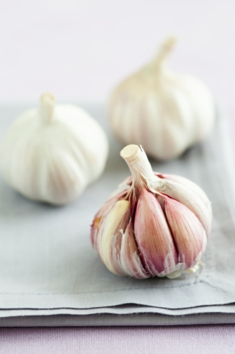 Garlic Clove「Fresh garlic」:スマホ壁紙(3)