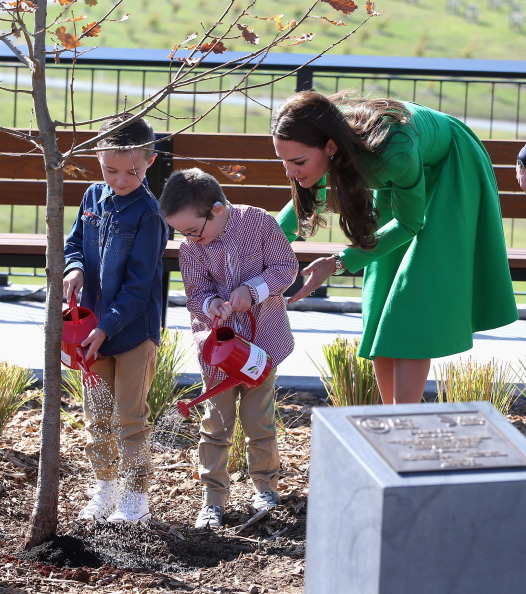 Tree「The Duke And Duchess Of Cambridge Tour Australia And New Zealand - Day 18」:写真・画像(8)[壁紙.com]