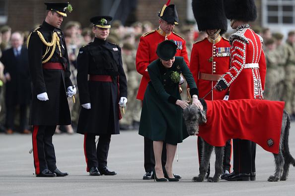 キャラクター「The Duke And Duchess Of Cambridge Attend The Irish Guards St Patrick's Day Parade」:写真・画像(17)[壁紙.com]