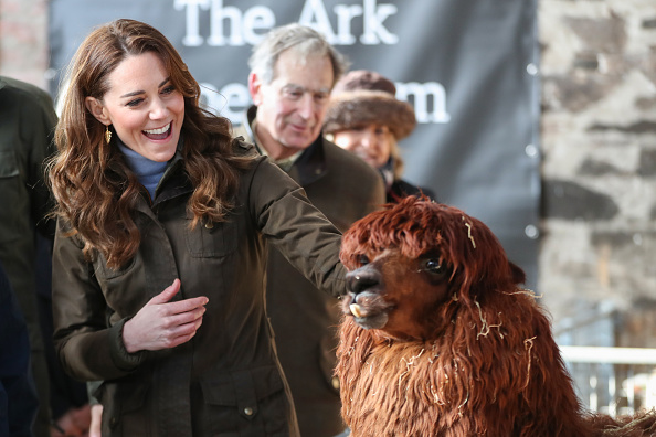 animal「The Duchess Of Cambridge Visits Northern Ireland」:写真・画像(19)[壁紙.com]