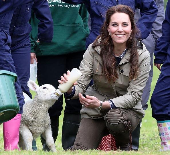 Farm「The Duchess Of Cambridge Visits Farms For City Children」:写真・画像(12)[壁紙.com]