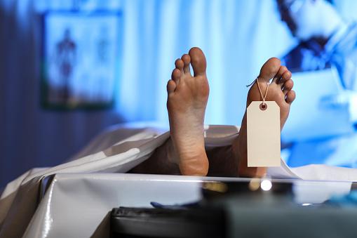 雪「Medical Examiner with corpse in morgue.」:スマホ壁紙(16)