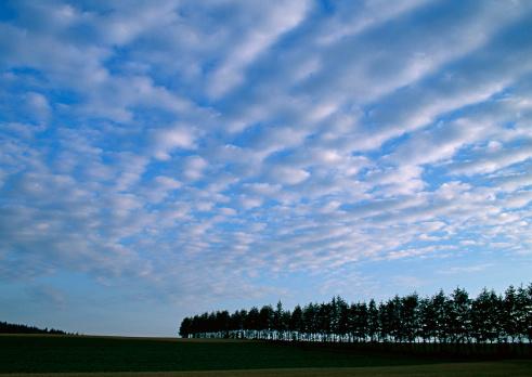 Hokkaido「Cloud」:スマホ壁紙(6)