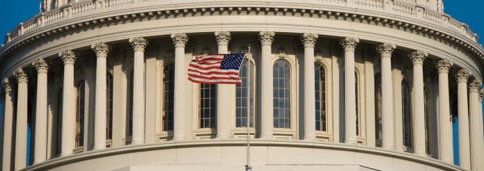 Capitol Hill「US Flag at Capitol」:スマホ壁紙(18)
