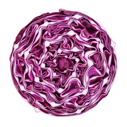 Cross Section「Red cabbage portion on white」:スマホ壁紙(16)