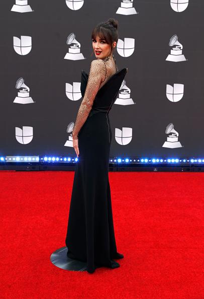 Latin Grammy Awards「20th Annual Latin GRAMMY Awards - Arrivals」:写真・画像(16)[壁紙.com]