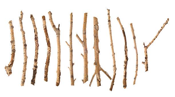 Twigs and Sticks:スマホ壁紙(壁紙.com)