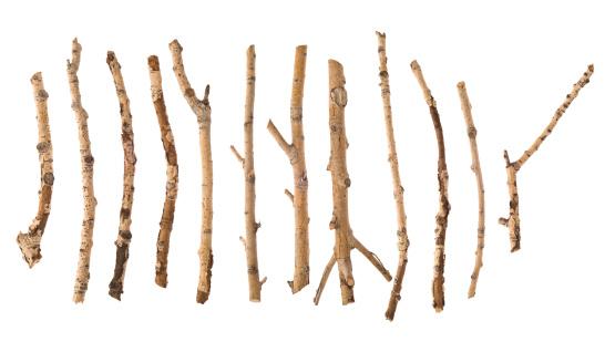 Twig「Twigs and Sticks」:スマホ壁紙(12)