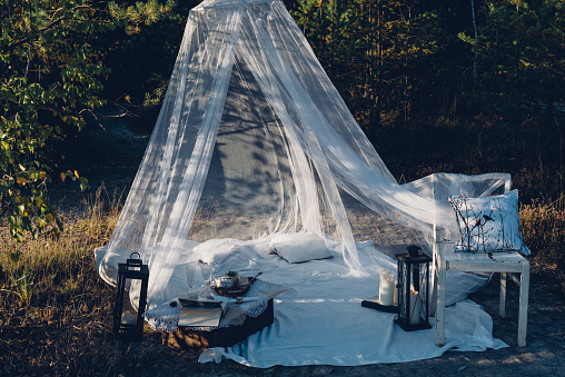 Standing Out From The Crowd「Romantic camp in autumnal nature」:スマホ壁紙(10)