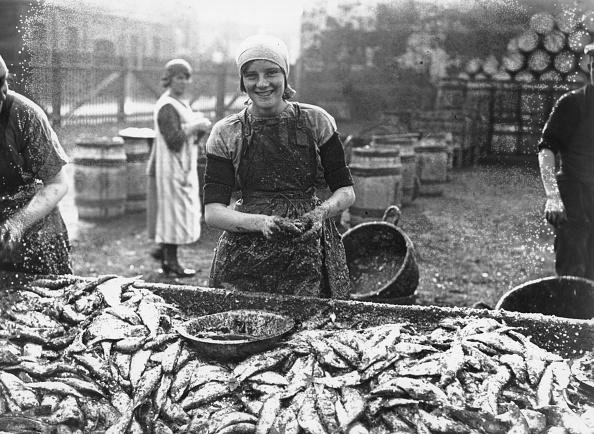 Norfolk - England「Gutting Herrings」:写真・画像(16)[壁紙.com]