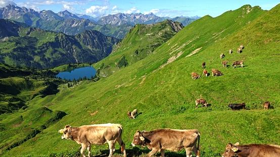 Walking「Lake Seealp at Nebelhorn, Allgäu, Bavaria」:スマホ壁紙(9)