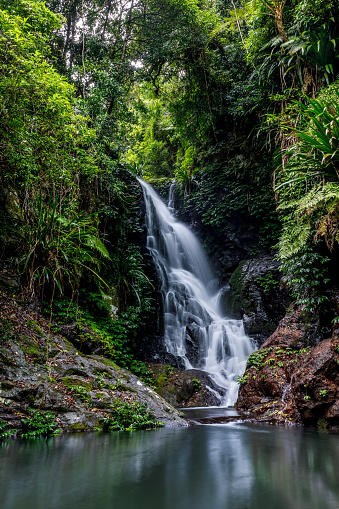 Queensland「Elabana Falls - Rainforest Waterfall in Lamington National Park Australia」:スマホ壁紙(3)