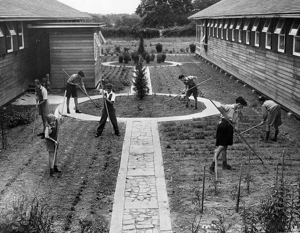 Ornamental Garden「Boys Gardening」:写真・画像(8)[壁紙.com]