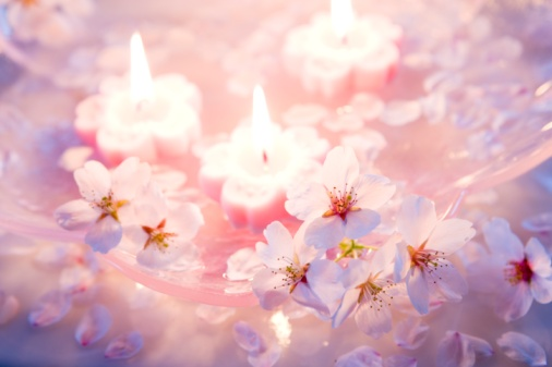 ソメイヨシノ「Pink candles and Yoshino cherry blossom flowers floating on water」:スマホ壁紙(6)