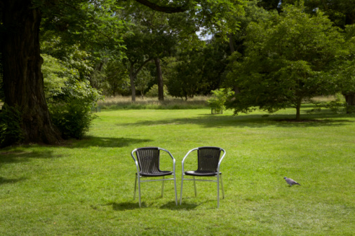 Two Objects「Two black garden chairs on grass」:スマホ壁紙(4)