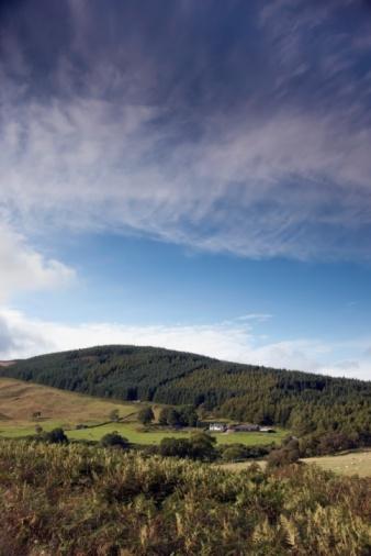 Island of Arran「Rolling hills, Island of Arran, Scotland」:スマホ壁紙(19)